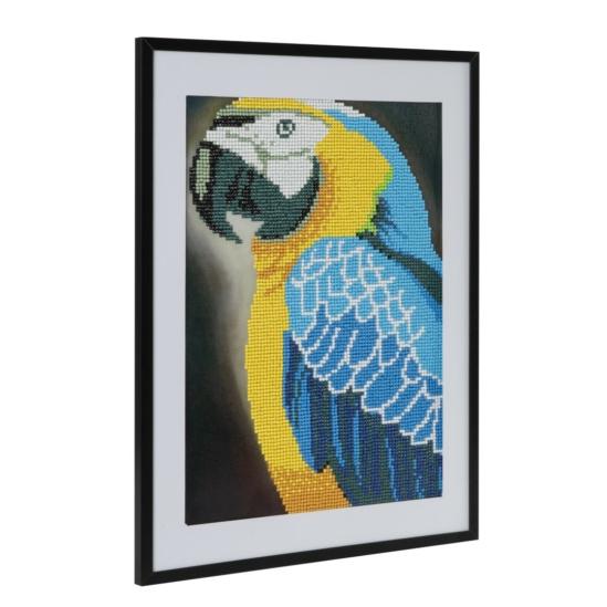 Papagáj 30x40 cm