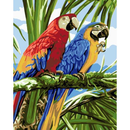 Papagájok - számfestő készlet