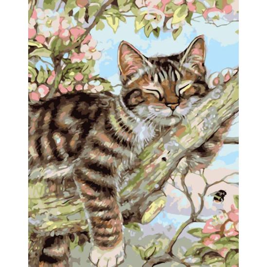 Alvó macska a faágon - számfestő készlet
