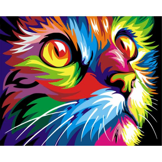 Színes macskafej - számfestő készlet