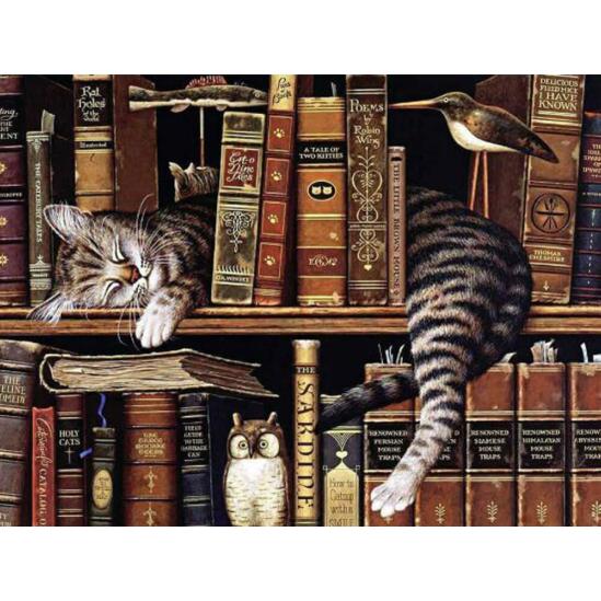 Alvó macska a könyvespolcon - gyémántszemes kirakó