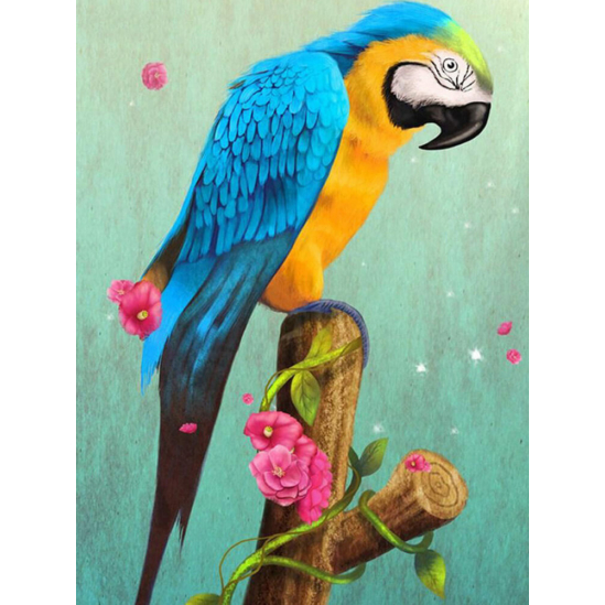 Kék-sárga papagáj virággal - gyémántszemes kirakó