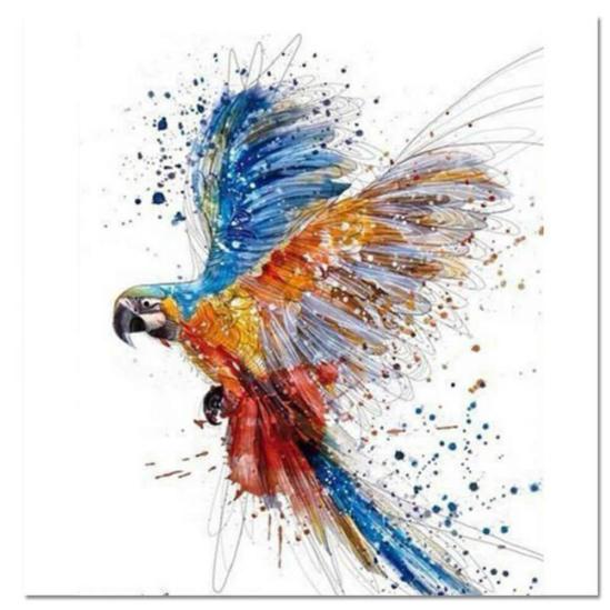Színes papagáj - számfestő készlet
