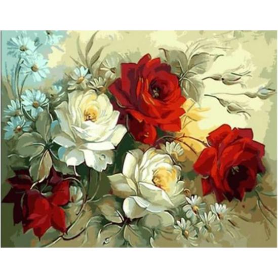 Rózsák - számfestő készlet