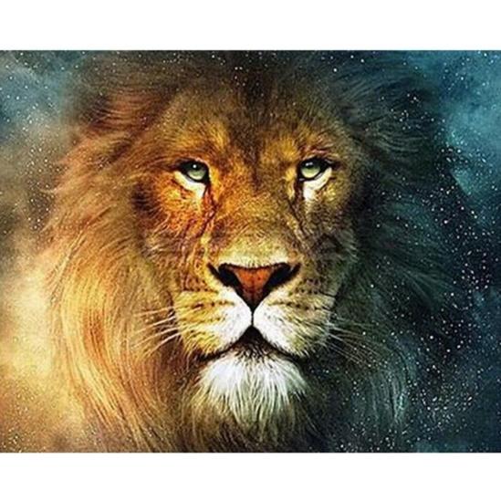 Fenséges oroszlán - számfestő készlet