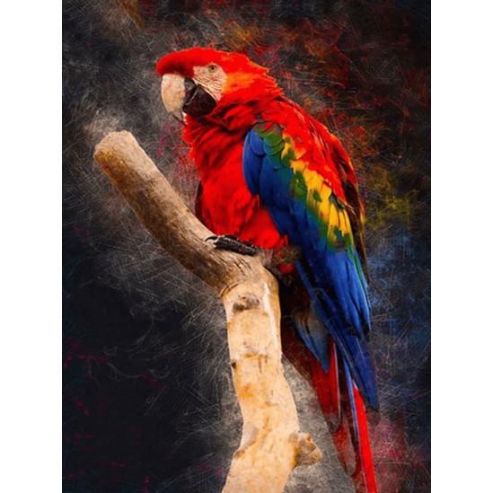 Piros papagáj - gyémántszemes kirakó